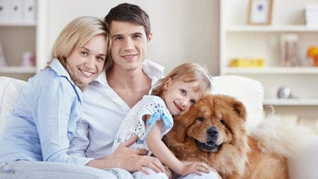 Wills & Trusts dog-young-family Direct Wills Preston